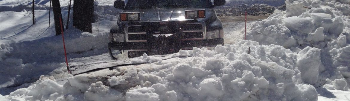 Expert Snow Removal