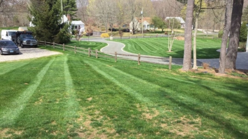 East Lyme, CT - Weekly Mowing Service